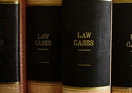 CUSTODY  </br>LAW